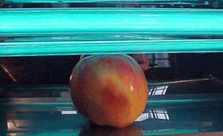 Métodos para la determinación de la dosis de radiación ultravioleta de onda corta (uvc) en alimentos