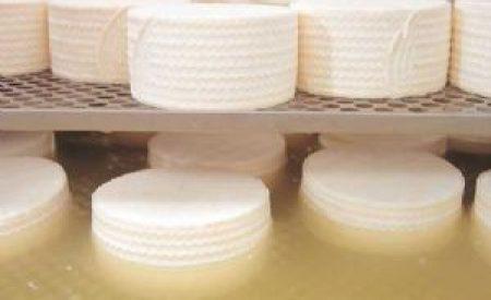 Suero de leche y su aplicación en la elaboración de alimentos funcionales