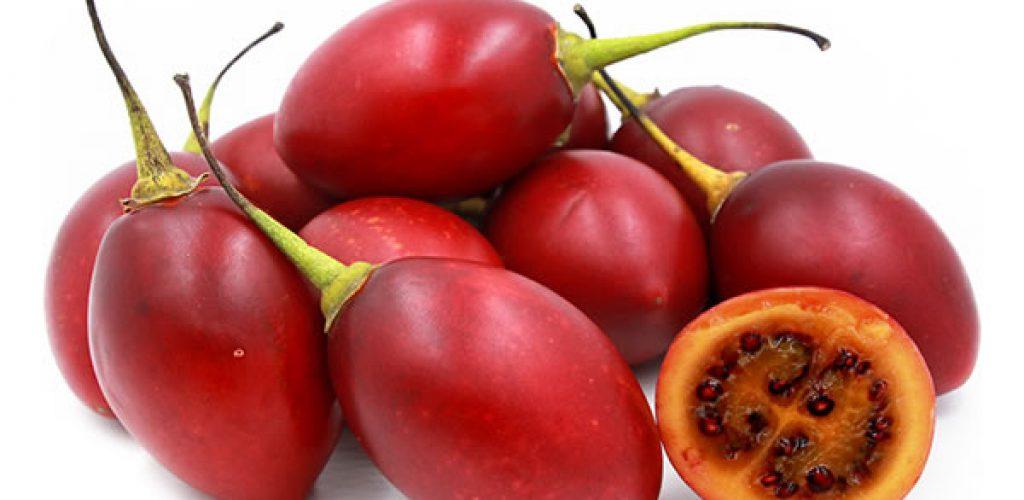 El tamarillo (Cyphomandra betacea) y su importancia como fuente de compuestos antioxidantes