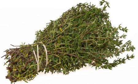 Actividad antimicrobiana de aceite esencial de tomillo (Thymus vulgaris)