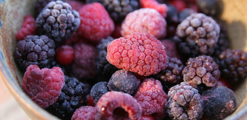 Aspectos tecnológicos de la congelación en alimentos