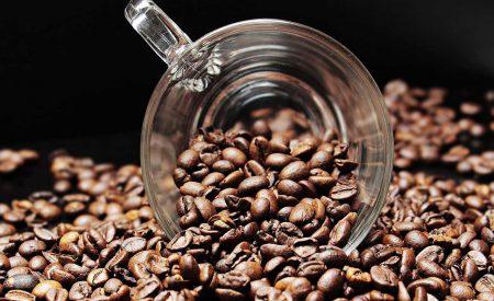 Producción de café (Coffea arabica L.): cultivo, beneficio, plagas y enfermedades