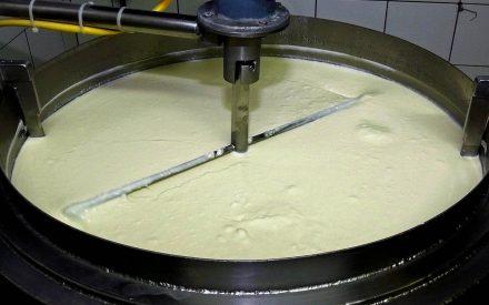 Productos lácteos fermentados como vehículo para microorganismos probióticos