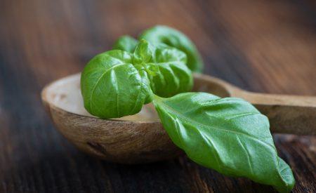 Propiedades del aceite esencial de albahaca (Ocimum basilicum L.) y sus aplicaciones en alimentos